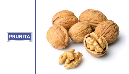 Nueces prunita